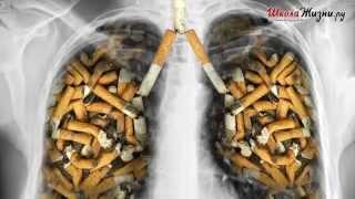 Почему Дети Начинают Курить?(Образно говоря, курение можно считать медленным убийством, саморазрушением или самоубийством. Во-первых,..., 2014-03-31T10:30:49.000Z)