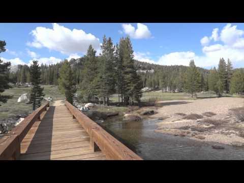 Tuolumne Meadows & Tenaya Lake in Yosemite National Park