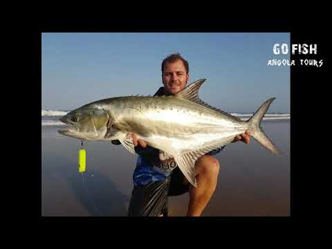 Angola Fishing Tour - June 2017 - Go Fish Mossel Bay