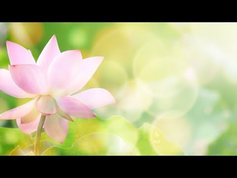 Peaceful Music, Relaxing Music, Meditation Music , 'All Things Beautiful' by Nature With Music by Tim Janis