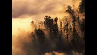 OLIVER - Good Morning Starshine