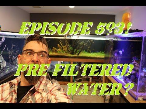 Episode 593! Pre filtered Aquarium Water?