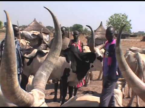 Homecoming in Southern Sudan