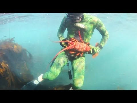 Lobster diving in Laguna Beach (re-up w/ mo betta music)