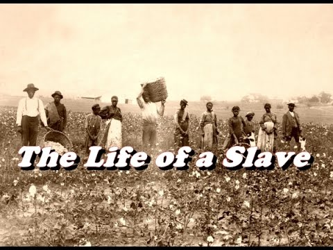 the life of a slave araminta The paperback of the harriet tubman: the road to freedom by leader of the harpers ferry slave a slave couple who spent a good deal of their married life in.
