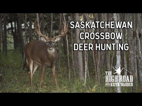 Saskatchewan Crossbow Deer Hunting   Woody River Trophy Hunts