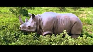Эйс Вентура 2: Когда зовет природа. Специалист по маскировке