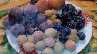 Можно ли замораживать фрукты. Замороженные фрукты как элемент питания в деревне.
