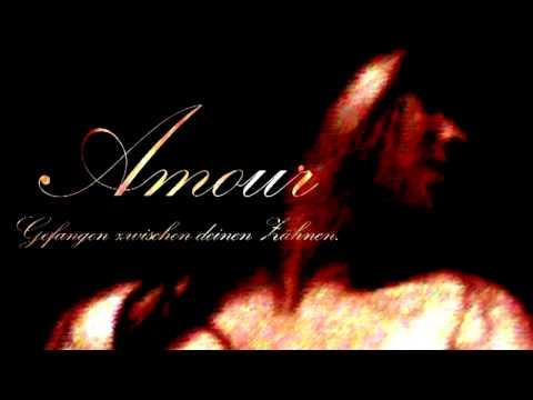 Rammstein - Amour [Instrumental]