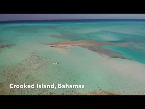 Crooked Island Bonefishing Adventures