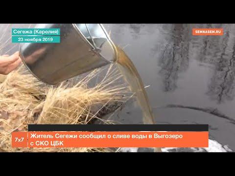 Карелия: Житель Сегежи сообщил о сливе воды в Выгозеро с СКО ЦБК