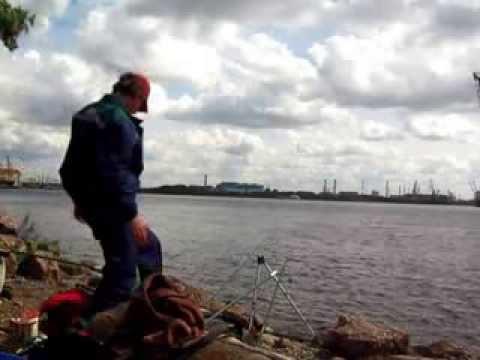 невский фидер санкт-петербург официальный сайт