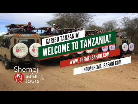 Shemeji Safari & Tours welcomes you to Tanzania
