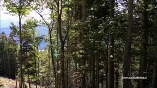 Экскурсия Зальцкаммергут - Австрия - Санкт Вольфганг(, 2015-09-01T17:43:08.000Z)