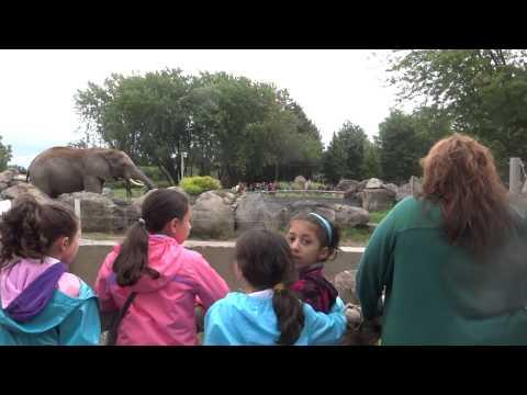 Badr sortie au zoo de granby