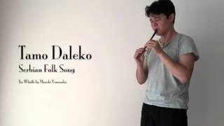 Tamo Daleko タモ・ダレコ | Serbian Folk Song セルビア伝統音楽 thumbnail