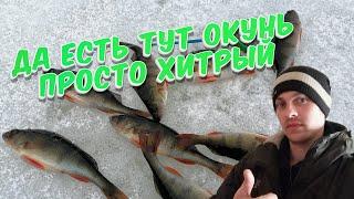 отчёт о рыбалке ловля окуня на мормышку на мотыля