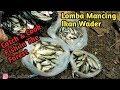 Lomba Mancing Ikan Wader, Hasilnya Luar Biasa Banyak || Catch N Cook Fish In The Forest
