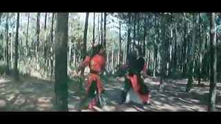 The Shaolin Brothers (1977) trailer