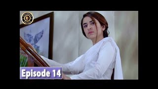 Pukaar Episode 14 - Top Pakistani Drama