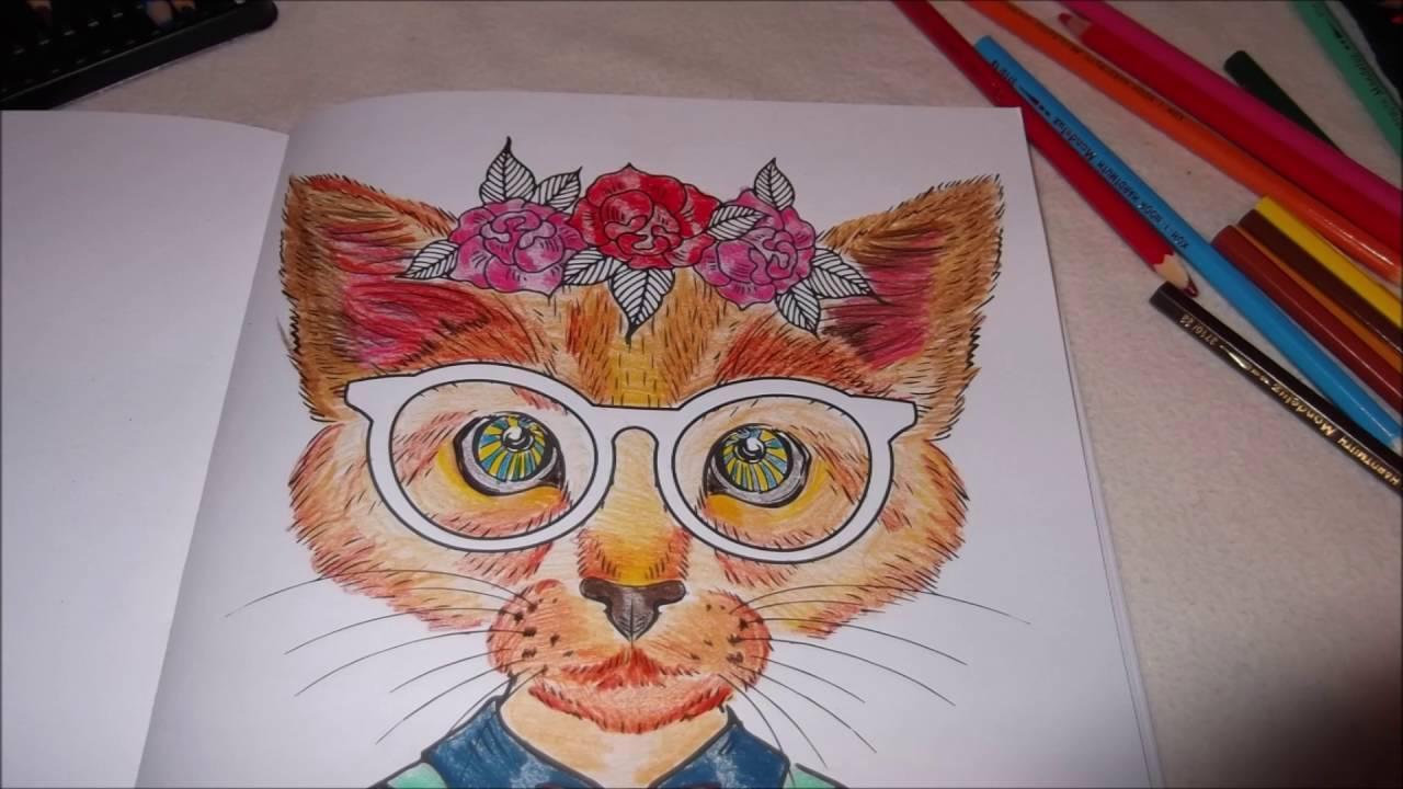 Modne Koty Kolorowanka Youtube