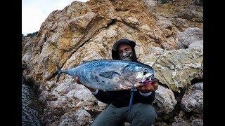 SHORE JIGGING FISHING VOL.2