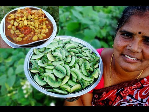 FARM FRESH Broad Beans Recipe | Prepared by My Mummy | VILLAGE FOOD