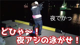 どひゃ深夜の堤防アジの泳がせ釣りで大物を確保