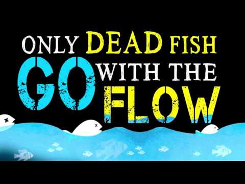 Br Shafi  : Only Dead Fish Go With The Flow