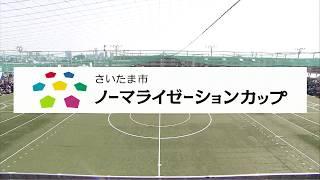 日本vsブラジル さいたま市ノーマライゼーションカップ2017(2017.03.20)