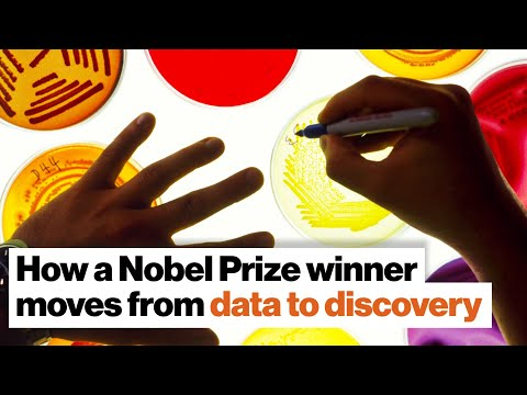 How a Nobel Prize winner moves from data to discovery | Jim Allison