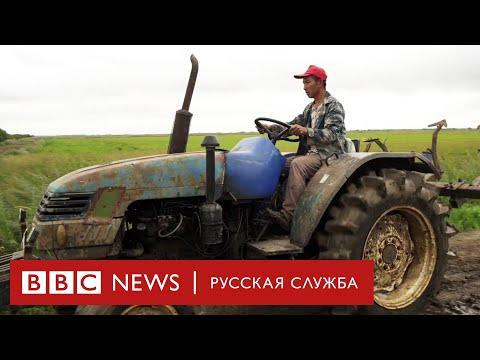 Смотреть Китайцы захватывают русскую деревню? Мы поехали и узнали онлайн
