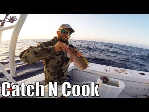 Fishing & Diving by Key Largo Molasses Reef | Catch and Cook