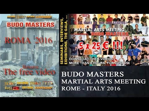 BUDO MASTERS MARTIAL ARTS MEETING. ROME - ITALY 2016. THE FREE VIDEO
