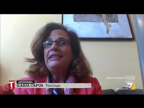 Coronavirus, Ilaria Capua: 'Virus trovato in modo occasionale, non per una particolare ...
