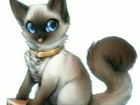 аниме фото кошек
