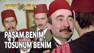 Tosun Paşa - Paşam Benim, Tosunum Benim