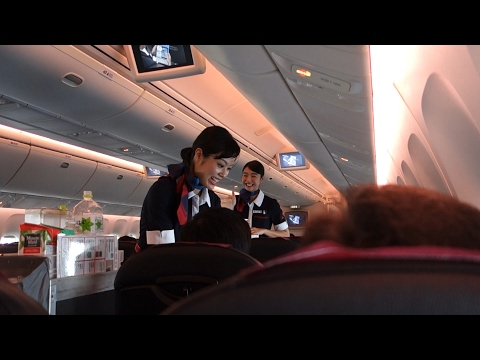 FLIGHT REVIEW Japan Airlines HND to ITM B767 domestic Economy class   B767