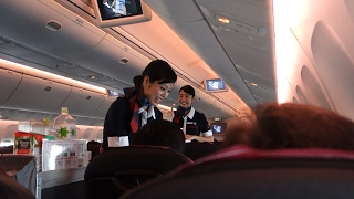 FLIGHT REVIEW Japan Airlines HND to ITM B767 domestic Economy class  フライトリサーチ日本航空東京から大阪 B767