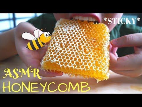 asmr-raw-honeycomb-(sarang-madu)- -sticky-eating-sounds- -asmr-indonesia- -no-talking