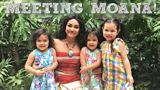 MEETING MOANA IN HAWAII! - May 04, 2017 -  ItsJudysLife Vlogs