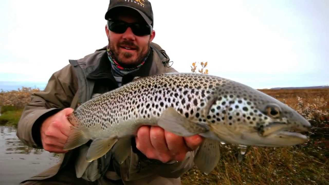 Fly fishing litla river iceland sea trout brown trout for Brown trout fly fishing