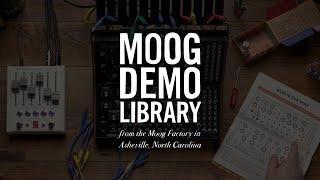 Moog Sound Studio: Mother-32 & DFAM   Acid Is the Way