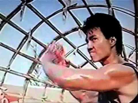 Robin Shou  Kungfu