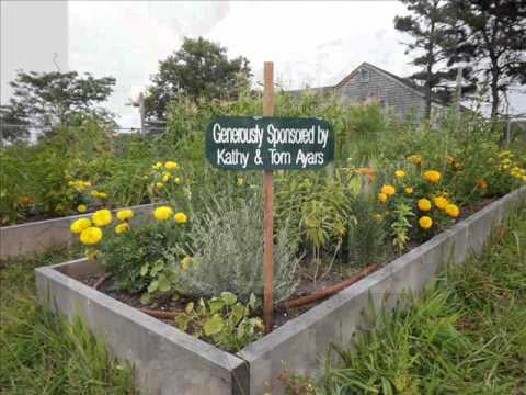 Garden Signs | Garden Signs For Herbs