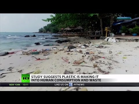 Report: Plastic Found in Human Bodies