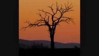 DURGA RANGILA SAD SONGS COLLECTION(mr ambersariya)