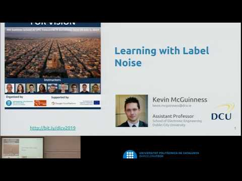 Deep Learning With Label Noise - Kevin McGuinness - UPC TelecomBCN Barcelona 2019