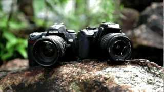 Краш-тест Canon 550d vs Nikon D90, 2 часть