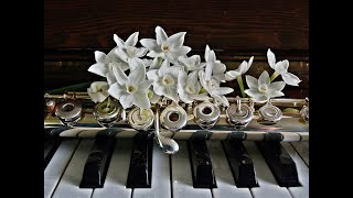 Music: The Jazz Piano - Piano, Double-Bass and drums.